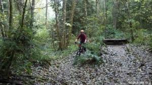 Good-time Slim going fast on the Trek Bike