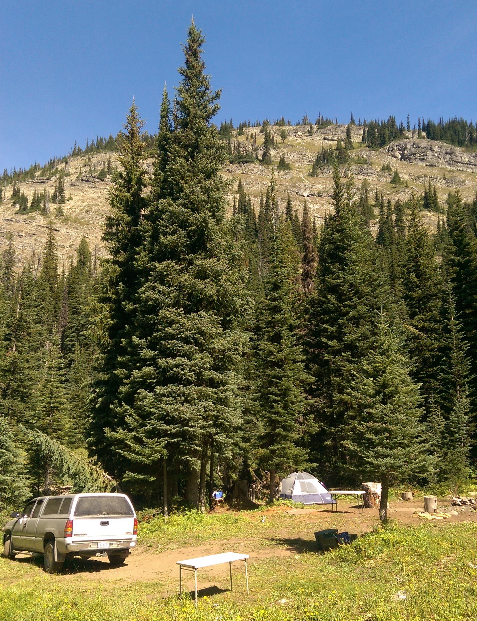 Hart's Pass Campsite